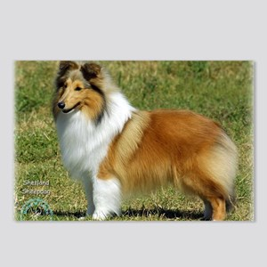 Shetland Sheepdog 9P033D- Postcards (Package of 8)