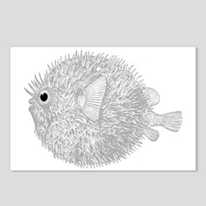 Blowfish Postcards (Package of 8)
