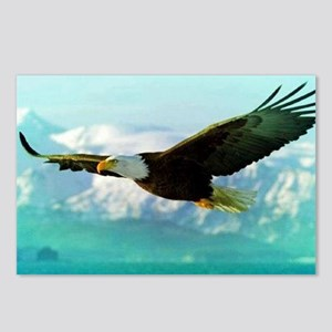 soaring eagle Postcards (Package of 8)