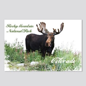 Rocky Mnt Natl Park Colo Moose Postcards (Package