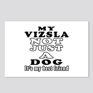 Vizsla not just a dog Postcards (Package of 8)