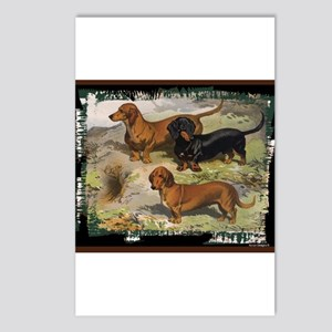 Designer Dogs Postcards - CafePress