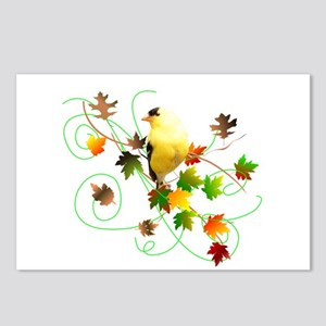 Goldfinch Postcards (Package of 8)