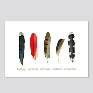 Nature Art Bird Feathers Postcards (Package of 8)