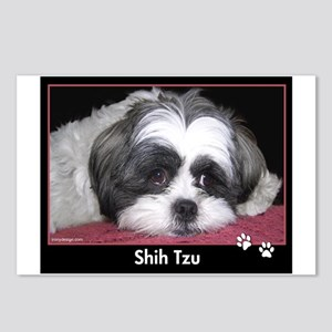 Shih Tzu Dog Photo Postcards (Package of 8)