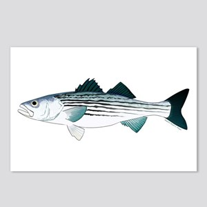 the latest a5c90 d8b4f Striped Bass v2 Postcards (Package of 8)