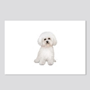 Bichon Frise #2 Postcards (Package of 8)