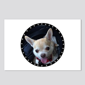Personalized Paw Print Postcards (Package of 8)