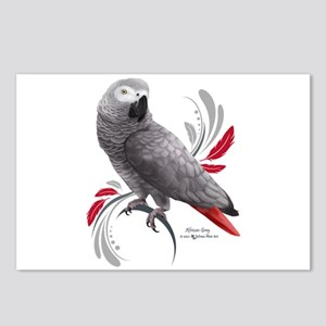 African Grey Parrot Postcards (Package of 8)