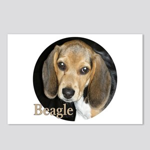 Close Up Puppy Beagle Postcards (package Of 8)