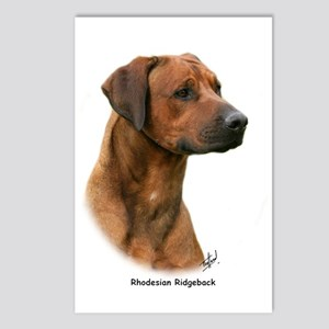 Rhodesian Ridgeback 9Y338D-044 Postcards (Package