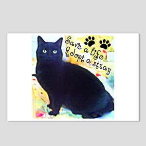 Stray Black Kitty Postcards (Package of 8)