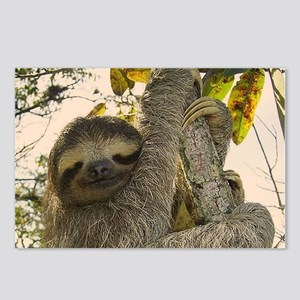 Sloth Postcards (Package of 8)