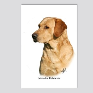 Labrador Retriever 9Y297D-038a Postcards (Package