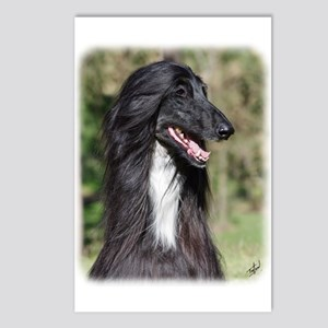 Afghan Hound AA017D-101 Postcards (Package of 8)