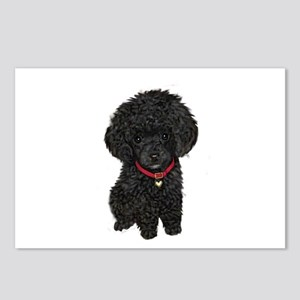 Poodle pup (blk) Postcards (Package of 8)