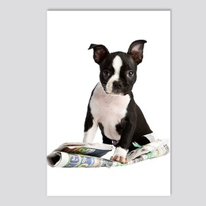 Boston Terrier Postcards (Package of 8)