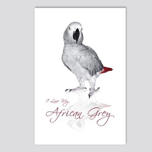 i love my african grey Postcards (Package of 8)
