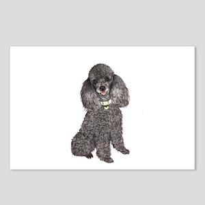 Poodle (Min-Slvr) Postcards (Package of 8)