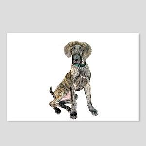Brindle Great Dane Pup Postcards (Package of 8)