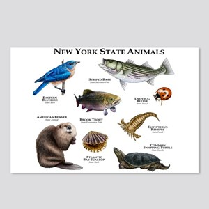 New York State Animals Postcards (Package of 8)