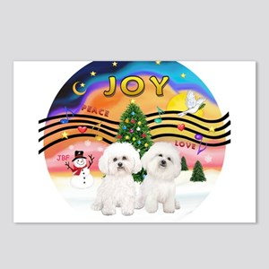 XMusic2 - Two Bichon Frise Postcards (Package of 8
