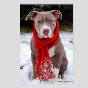 Holiday Pit Bull Postcards (Package of 8)