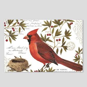 modern vintage winter woodland cardinal Postcards