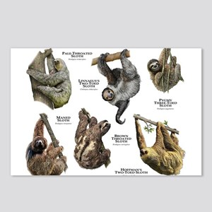 Sloths of the World Postcards (Package of 8)