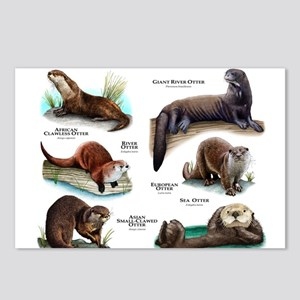 Otters of the World Postcards (Package of 8)