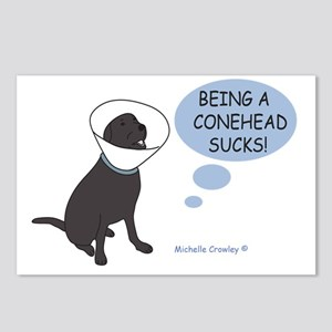 Conehead Postcards (Package of 8)