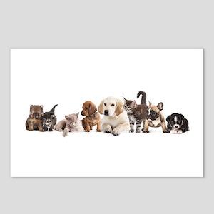 Cute Pet Panorama Postcards (Package of 8)