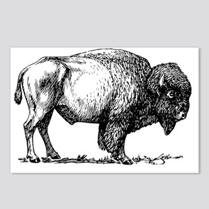 Buffalo/Bison Shirt Postcards (Package of 8)