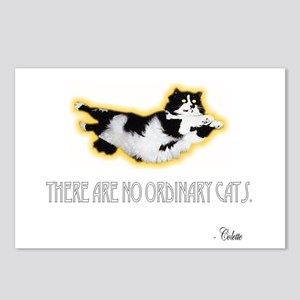 No Ordinary Cats Postcards (Package of 8)