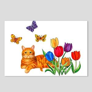 Orange Cat In Tulips Postcards (Package of 8)