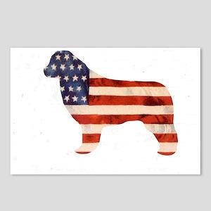Newfoundland Dog USA Postcards (Package of 8)
