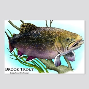 Brook Trout Postcards (Package of 8)