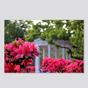 Old Well in Spring Postcards (Package of 8)