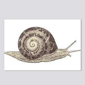 Hand painted animal snail Postcards (Package of 8)