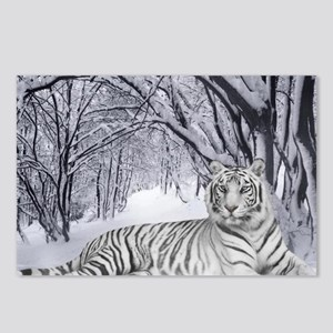 White Bengal Tiger Postcards (Package of 8)
