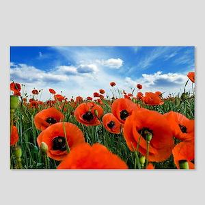 Poppy Flowers Field Postcards (Package of 8)