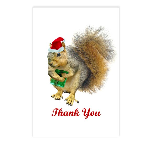 Christmas Squirrel.Christmas Squirrel Thank You Postcards Package Of