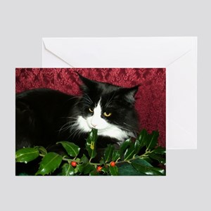 B&W Maine Coon Cat & Holly Greeting Cards (6)