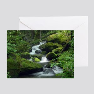 Summer Forest Brook Greeting Cards (Pk of 10)