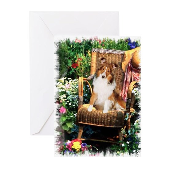 garden shetland sheepdog edged