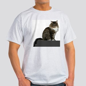 maine coon sitting tabby white T-Shirt