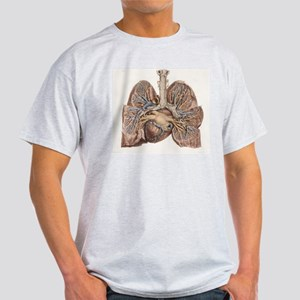 Heart and lungs, historical illustra Light T-Shirt