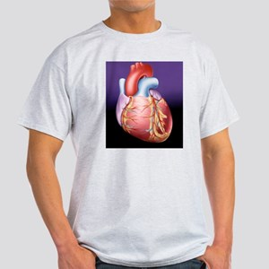 Heart, artwork Light T-Shirt