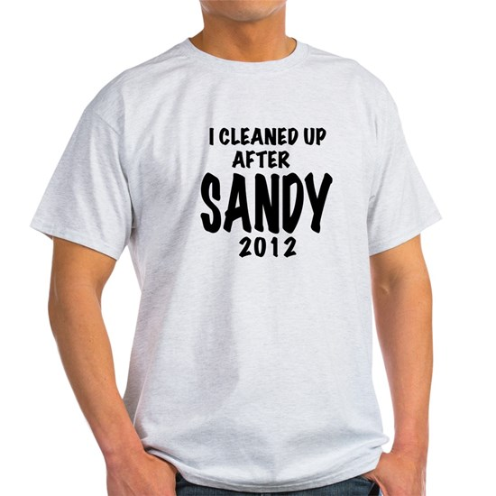 I Cleaned Up After Sandy, 2012