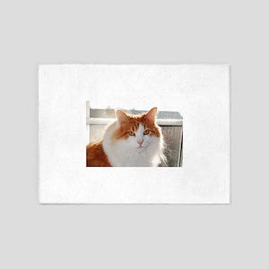 norwegian forest cat orange white 5'x7'Area Rug